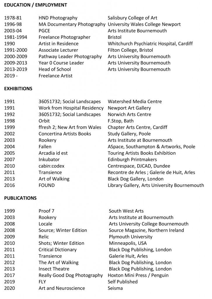 Microsoft Word - CV July 2020.docx